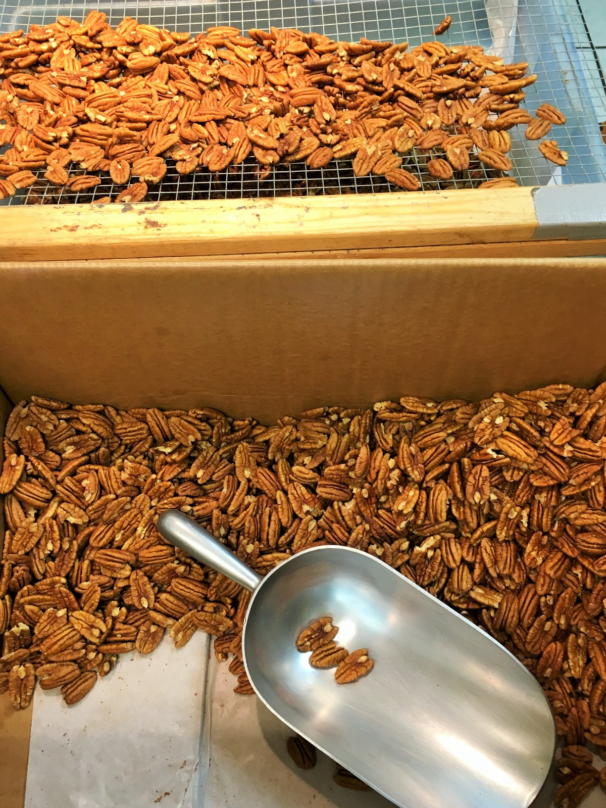 cleaned-pecan-halves-on-the-screen-freshly-shipped-pecan-halves-in-the-box