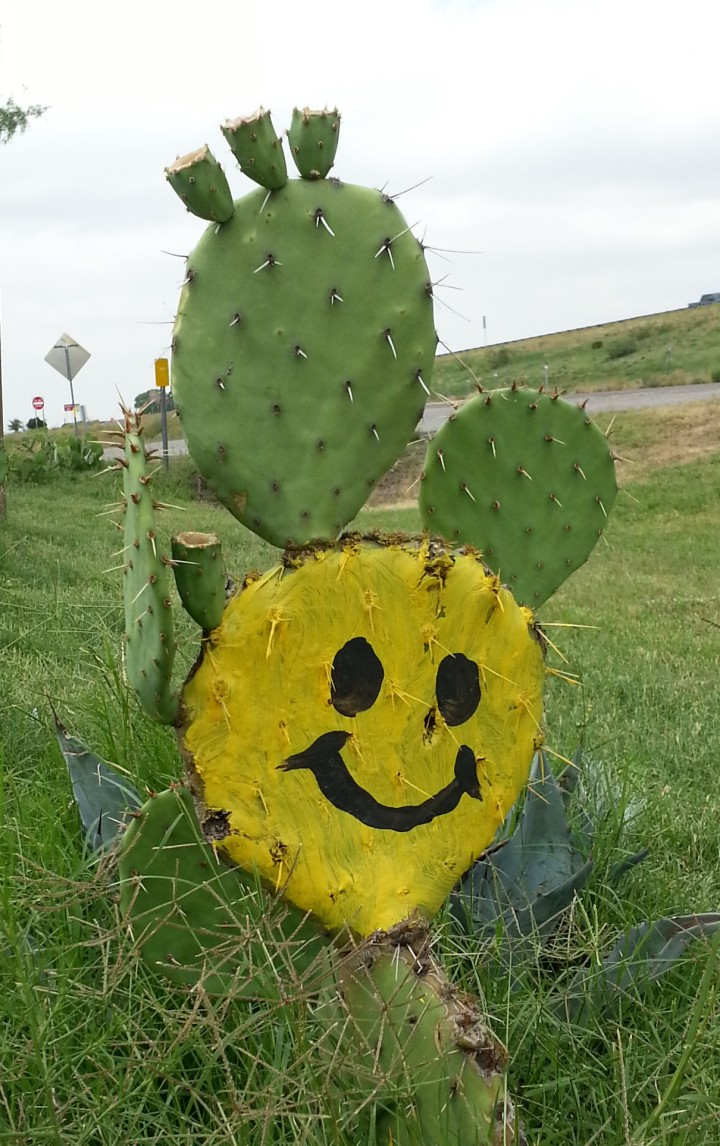 I saw this in Balmorhea a couple years ago. Prickly Pears make me happy.