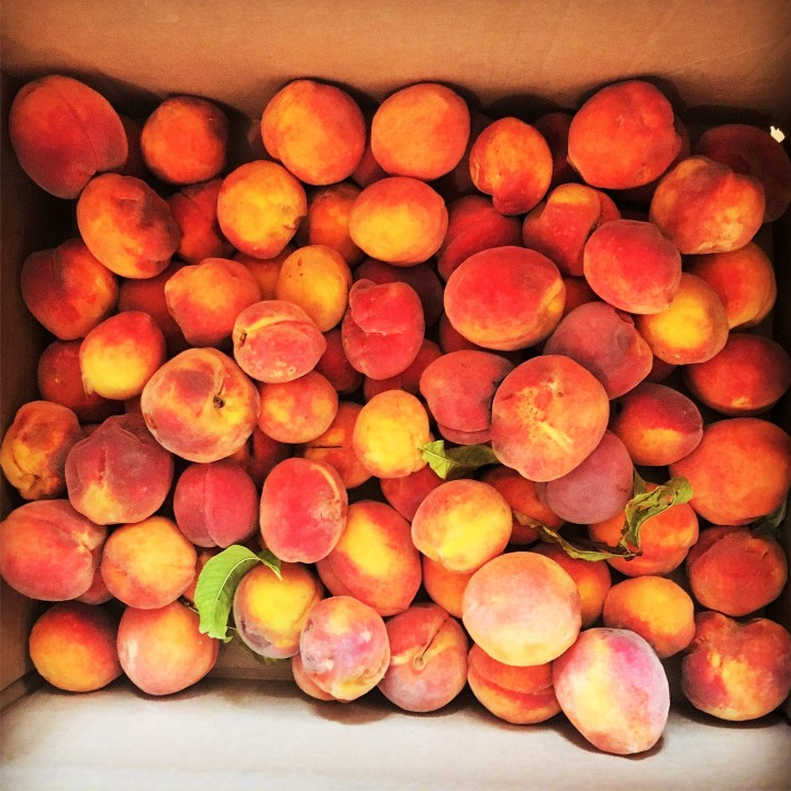 Box of local peachs from Stone Village in Fort Davis.