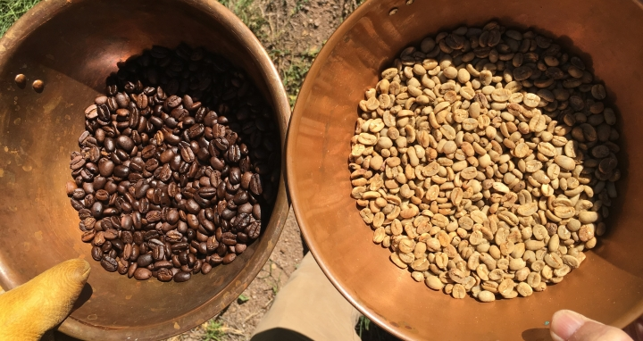Top, freshly roasted coffee beans. Bottom, green beans before the roast.