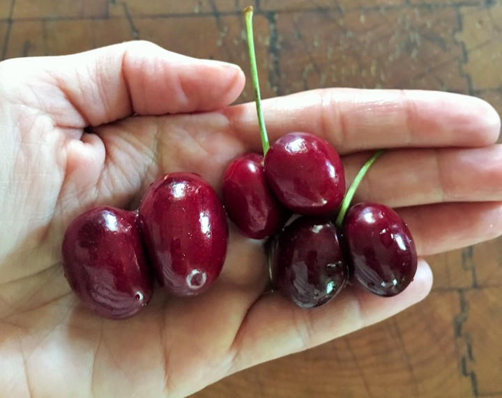 The bing cherries from Washington had lots of doubles.
