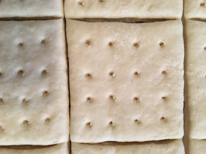 Pre-baked hardtack dough, docking holes poked with a screw, sliced with a pizza cutter.
