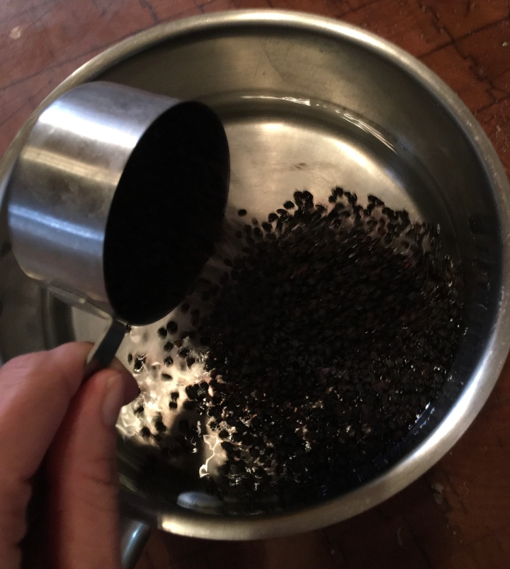 Half a cup of dried elderberries added to two cups of water.